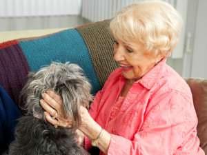Animal domestique et maison de retraite