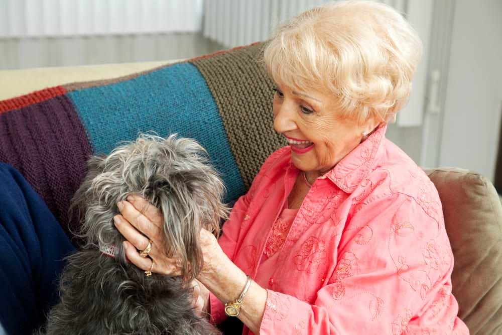 Fabulous Malvoyants en maison de retraite : prise en charge BA24