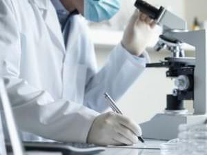 La perte du chromosome Y associée à la maladie d'Alzheimer