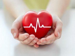 Le don d'organes : comment ça marche ?