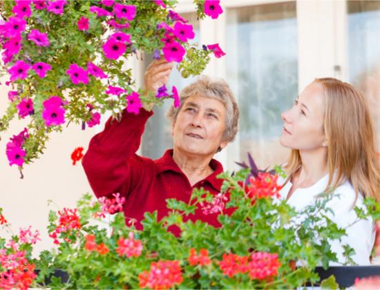6 questions sur les aides des caisses de retraite
