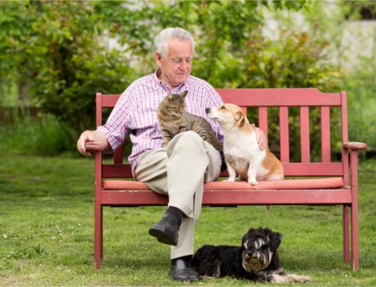 Comment trouver une maison de retraite qui accepte les animaux ?