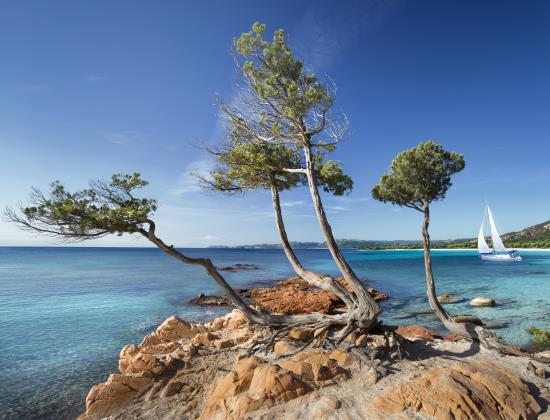 Les tarifs des Ehpad en Corse